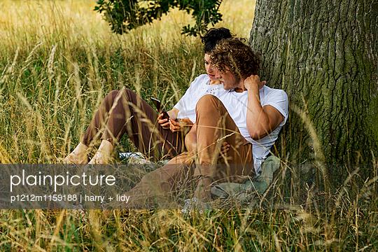 Junges Paar unter dem Baum - Tablet - p1212m1159188 von harry + lidy