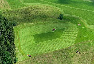 ein Feld wird im Schwarzwald abgeerntet - p1354m1423591 von Kaiser