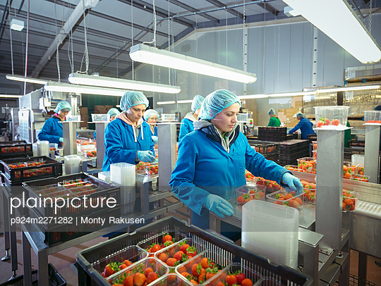 UK, Workers at strawberry packaging line - p924m2271282 by Monty Rakusen