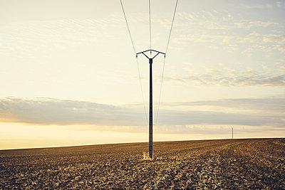 Pylon in a field at sunrise, France - p1312m2228673 by Axel Killian