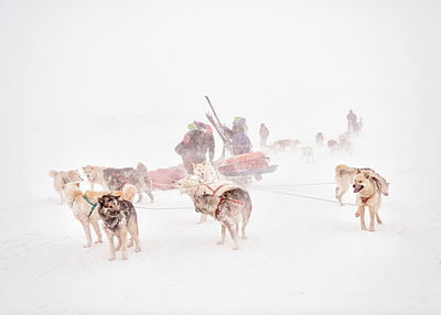 Greenland, ski tourer and huskies - p300m1588172 von Alun Richardson