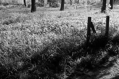 p5676910 von Norma Ericsson