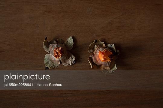p1650m2258641 by Hanna Sachau