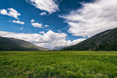 Scenic view of green landscape against sky at Rocky Mountains National Park - p1166m1543133 by Cavan Images