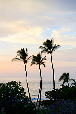 Paradise, Hapuna Beach - p1196m1000690 by Biederbick & Rumpf