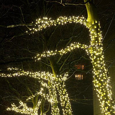 Weihnachtsbeleuchtung - p6060670 von Iris Friedrich