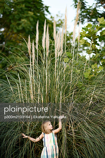Blond little girl standing in front of Pampas grass - p300m2103164 by Ekaterina Yakunina