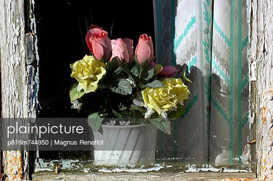 p816m744950 von Magnus Reneflot