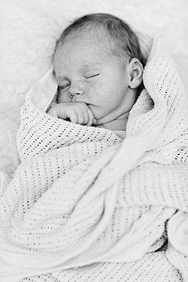 Schlafendes Neugeborenes - p814m891075 von Renate Forster