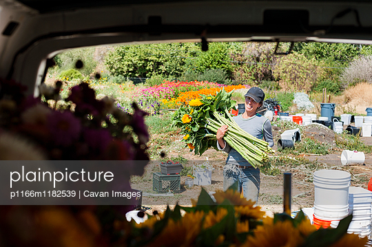 p1166m1182539 von Cavan Images