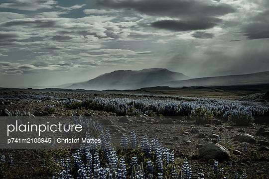 Island im Sommer - p741m2108945 von Christof Mattes