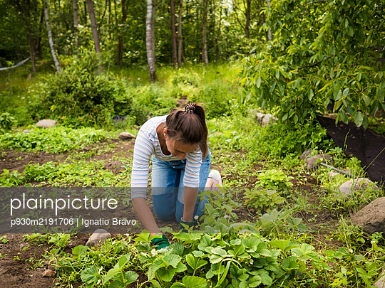 Idyllic garden - p930m2191706 by Ignatio Bravo