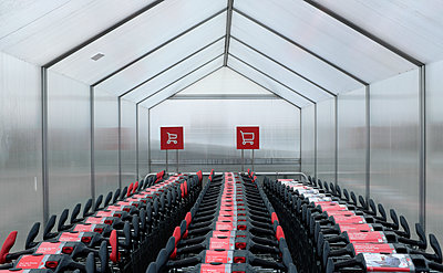Trolleys at a Supermarket - p116m2278713 by Gianna Schade
