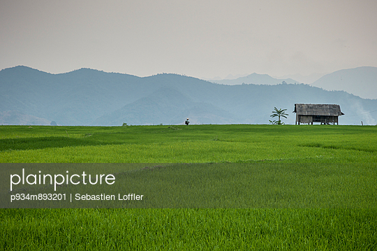 Rice field amidst a mountainous landscape along the trail between Moc Chau Lodge and Na Muong - p934m893201 by Sebastien Loffler