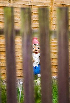 Gartenzwerg hinterm Zaun - p992m791679 von Carmen Spitznagel