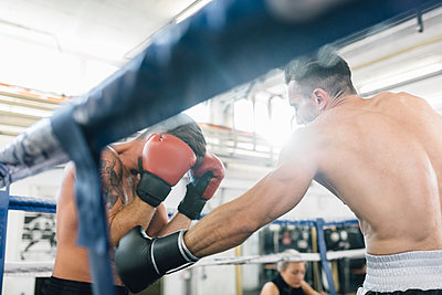 Two boxers fighting in boxing ring - p300m1192265 by Matthias Drobeck