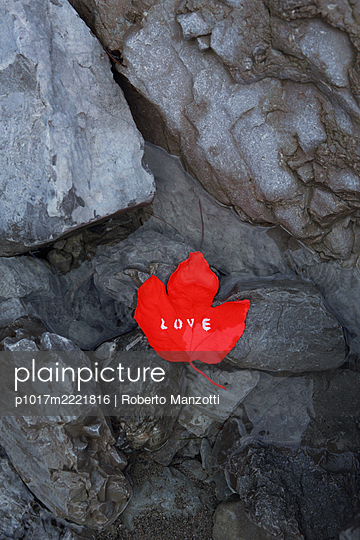 Red leaf with writing love on rock - p1017m2221816 by Roberto Manzotti