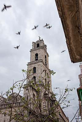 Kirchturm mit Tauben - p304m1092284 von R. Wolf
