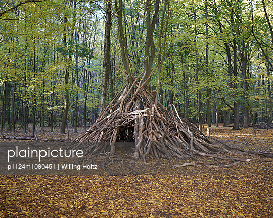 Versteck im Wald - p1124m1090451 von Willing-Holtz