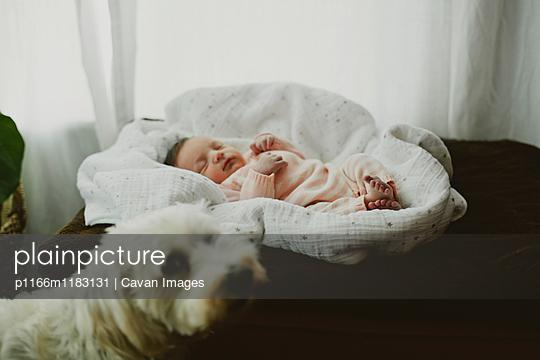 p1166m1183131 von Cavan Images