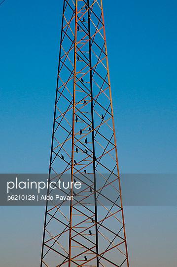 Überlandleitung - p6210129 von Aldo Pavan