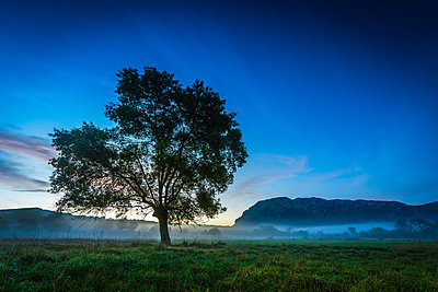 Sunrise near Pic Saint-Loup - p829m972310 by Régis Domergue