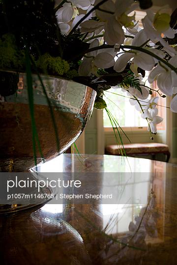 Orchideen - p1057m1146765 von Stephen Shepherd