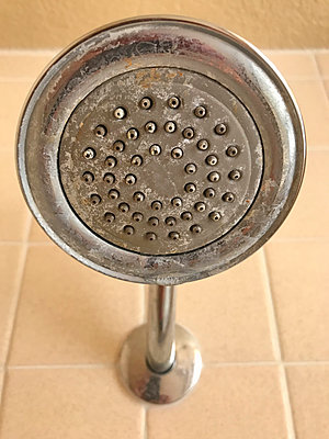 Shower sprinkler with limescale - p1048m2025470 by Mark Wagner