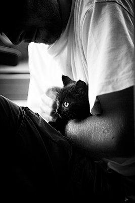 Kitten - p672m903943 by Vanessa Chambard