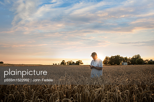 Distant Caucasian man examining wheat in field - p555m1522992 by John Fedele