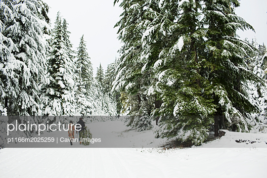 Rear view of couple with pine tree walking on snow covered field in forest - p1166m2025259 by Cavan Images