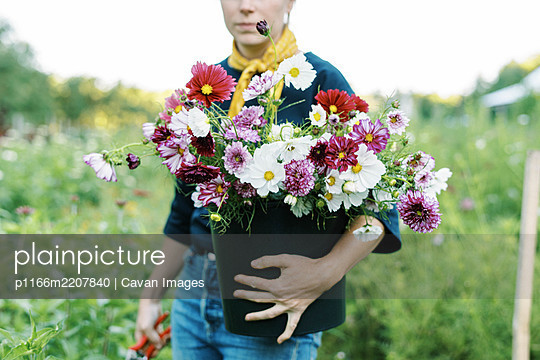 Portrait of a millennial woman working at her flower farm - p1166m2207840 by Cavan Images