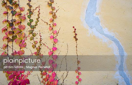 p816m745584 von Magnus Reneflot