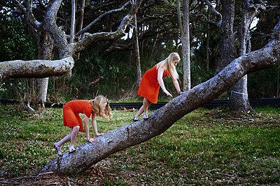 Schwestern in Rot - p1694m2291693 von Oksana Wagner