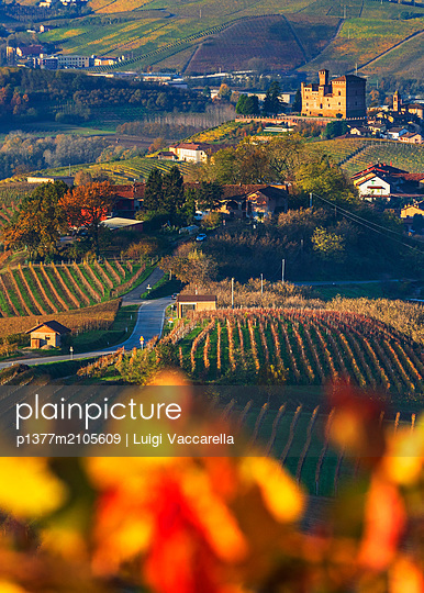 Italy, Piedmont, Cuneo district, Colline del Barolo, Langhe, Grinzane Cavour, Castle and Vineyards - p1377m2105609 by Luigi Vaccarella