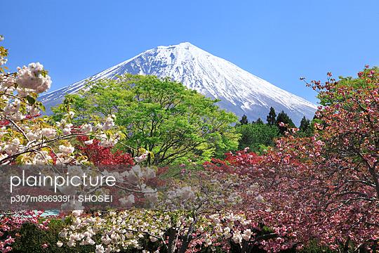 Mount Fuji - p307m896939f by SHOSEI
