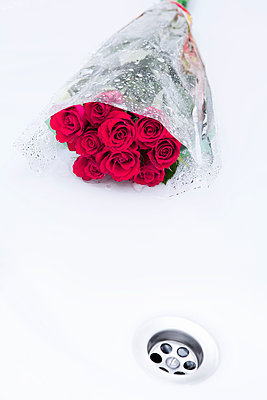 Roses in the shower - p1149m1474761 by Yvonne Röder