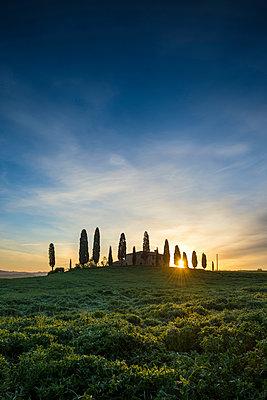 Landschaft bei Pienza, Val d`Orcia, Provinz Siena, Toskana, Italien, UNESCO Welterbe - p1316m1161055 von Daniel Schoenen
