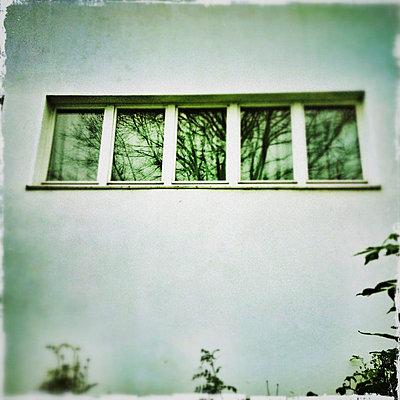 Spiegelung im Fenster - p586m780999 von KNSY Bande