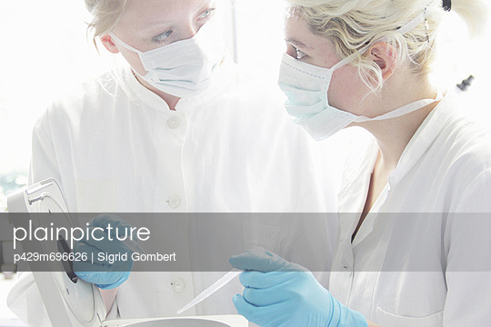 Scientists working together in lab - p429m696626 by Sigrid Gombert