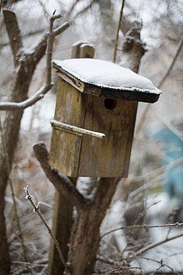 verschneites Vogelhaus - p1325m1508346 von Antje Solveig