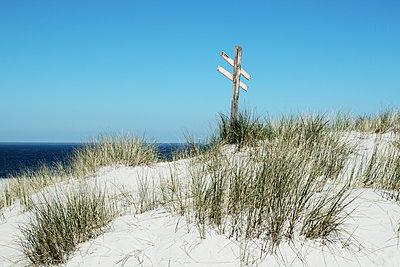 Wegweiser aus Holz am Strand - p1574m2151330 von manuela deigert