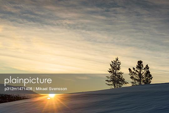 p312m1471408 von Mikael Svensson