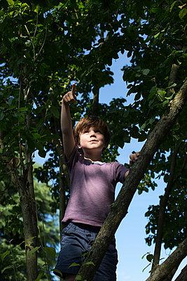 Junge auf einem Kletterbaum - p1308m2057181 von felice douglas
