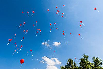 Rote Luftballons steigen zum Himmel auf, Englischer Garten, München, Oberbayern, Bayern, Deutschland - p1316m1160695 von Wilfried Feder