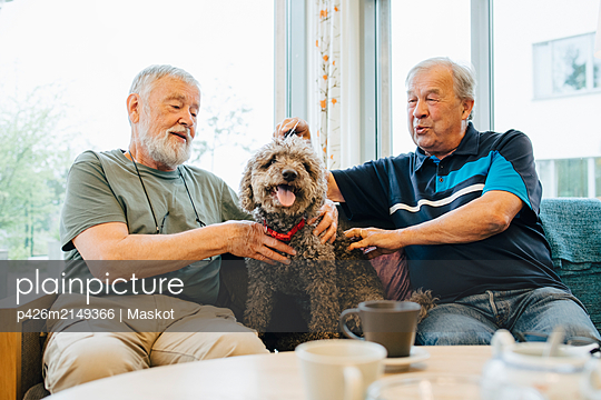 Retired senior male friends talking while stroking pet sitting on sofa at elderly nursing home - p426m2149366 by Maskot
