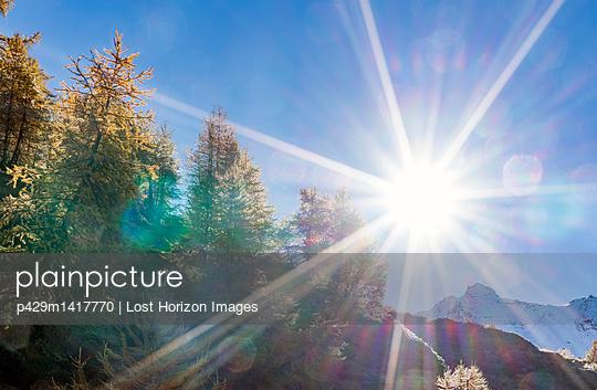 p429m1417770 von Lost Horizon Images