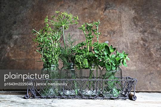 Green stuff - p1643m2229345 by janice mersiovsky