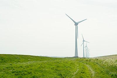 Row of wind turbines in field dyke landscape - p429m1469350 by Mischa Keijser