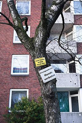Verbotsschilder an einem Baum vor einem Mietshaus - p586m899732 von Kniel Synnatzschke